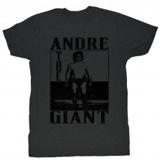 ANDRE THE GIANT  THE GIANT