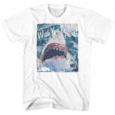 Jaws  Greetings
